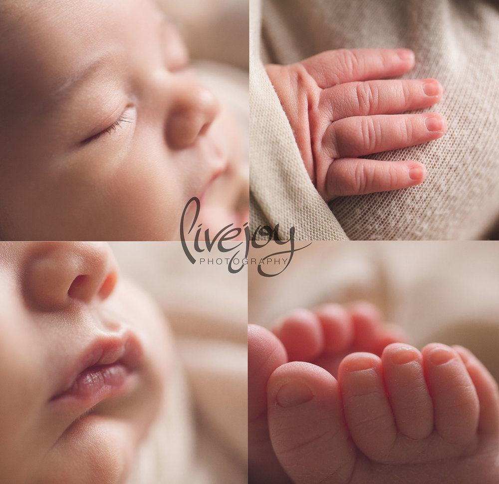 Newborn Macro Details Photography | LiveJoy Photography | Oregon