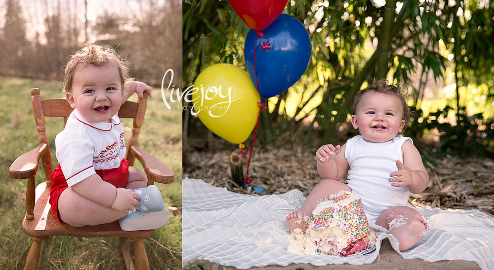 )ne Year Baby Cake Smash Birthday | Oregon | LiveJoy Photography