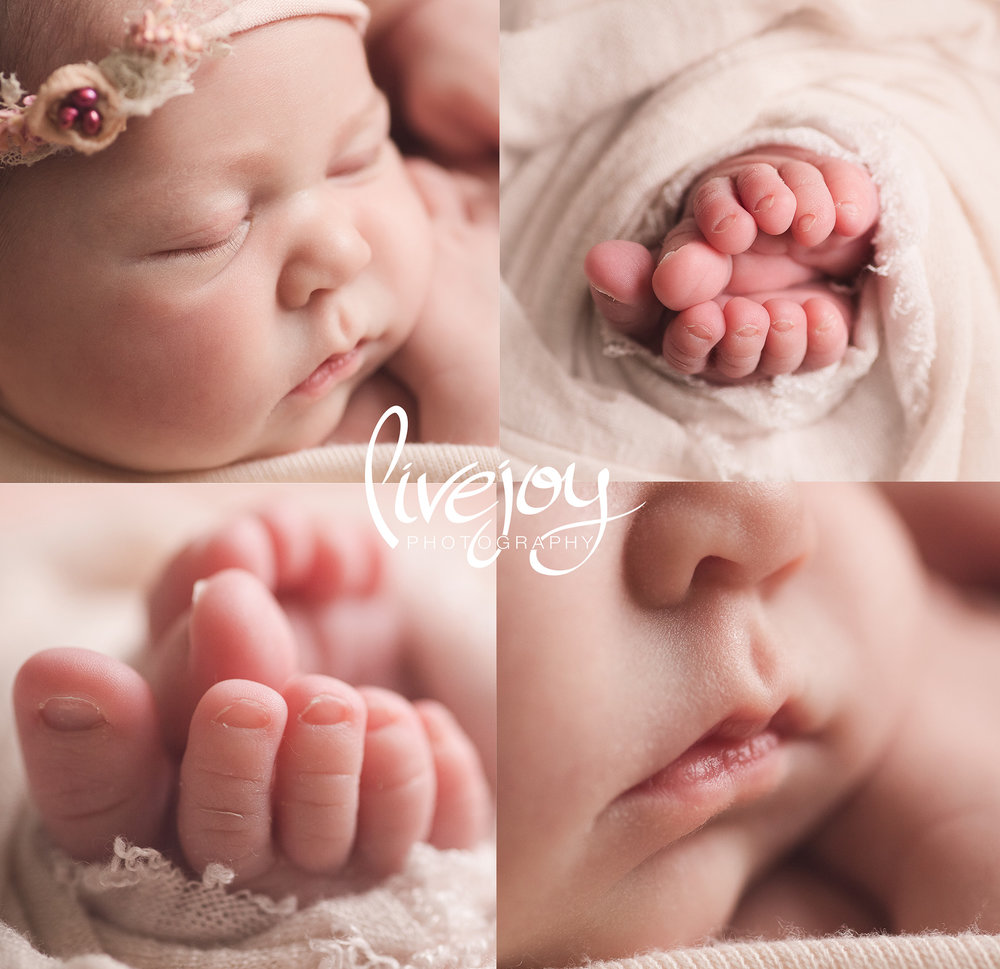 Macro Details | Newborn Photography | Oregon | LiveJoy Photography