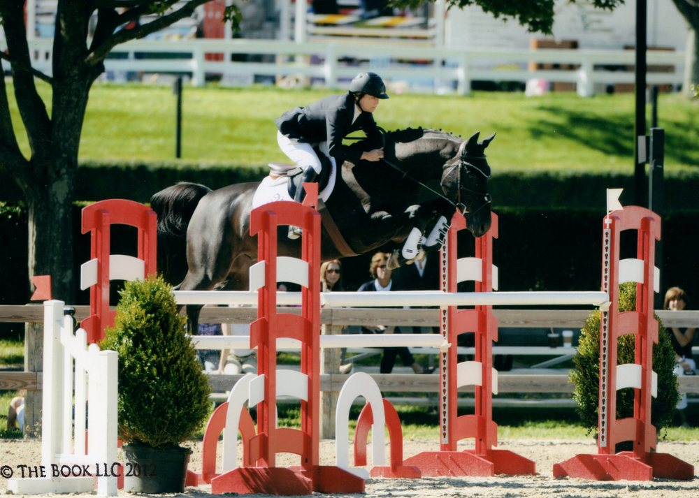 red oxer Well 2012006 cropped.jpg