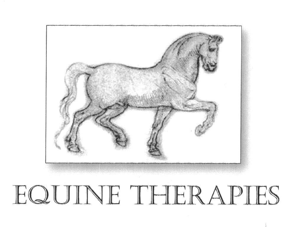 Equine Therapies