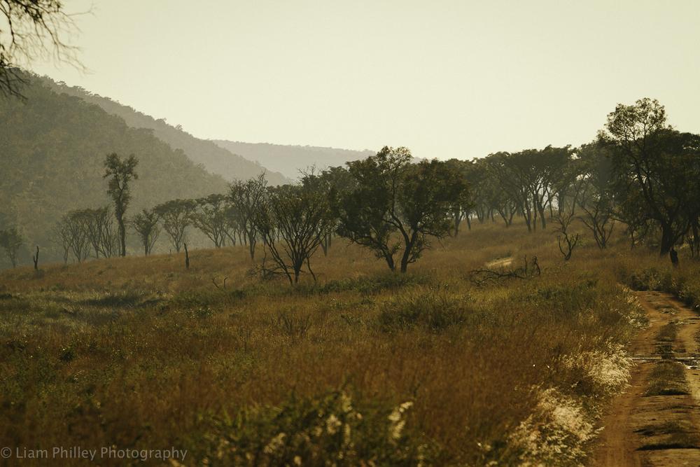 Welgevonden Game Reserve-11.jpg