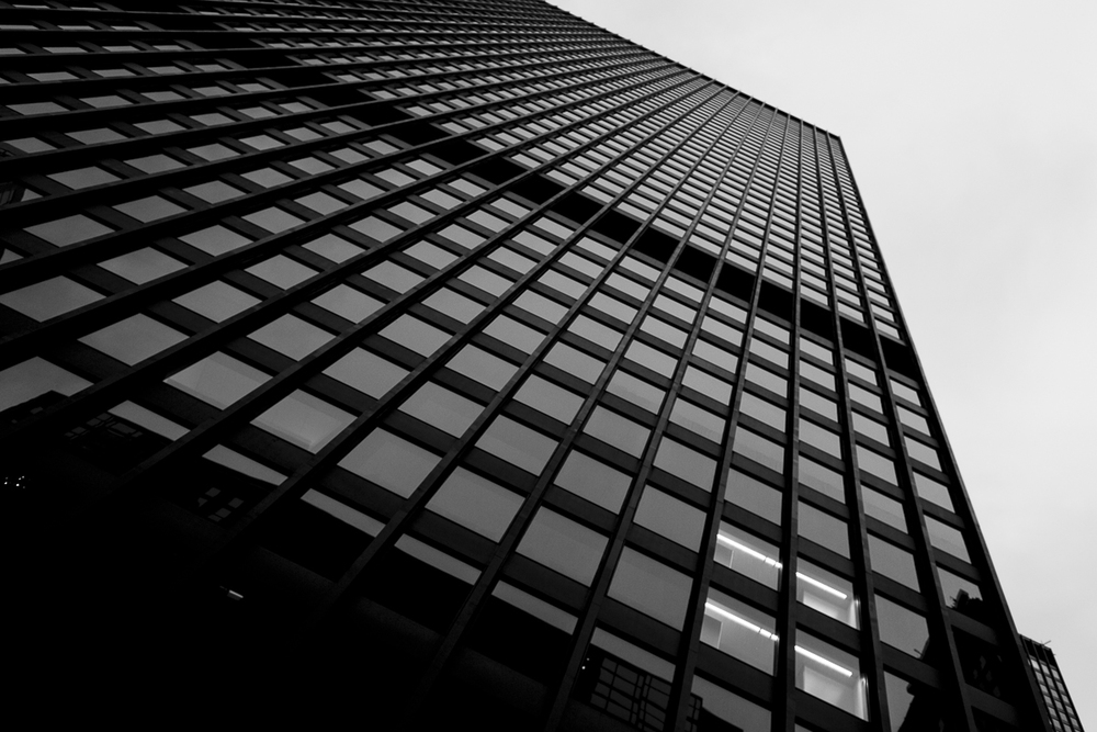 Mies van der Rohe by Liam Philley (14 of 16).jpg