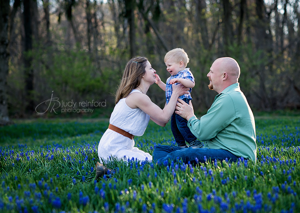 Family portraits in the bluebells.