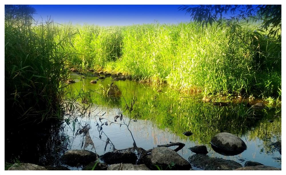 The Island Hopewell Creek.jpg