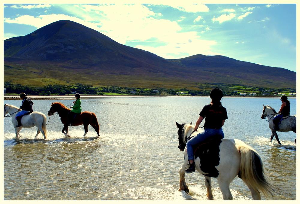 Riding Gypsies on Clew Bay.jpg