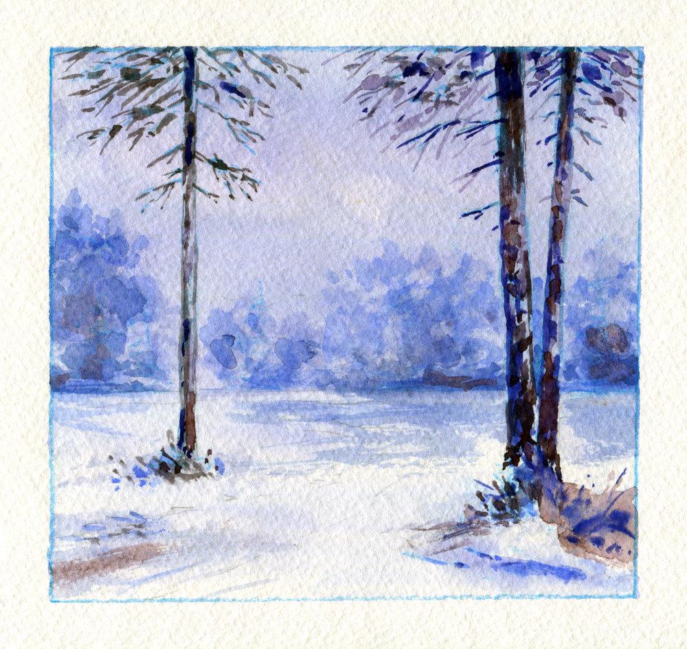 Arbres d'hiver.jpg