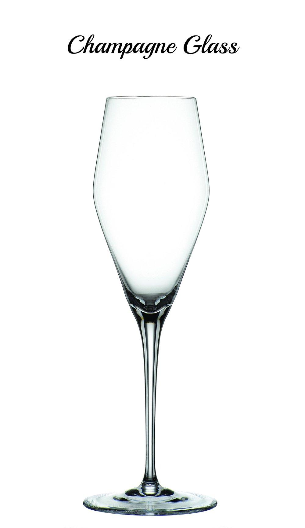 Hybrid Champagne Glass 4328029.jpg