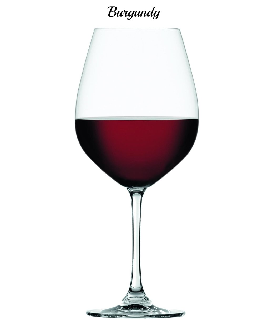 Salute Burgundy 4720170.jpg