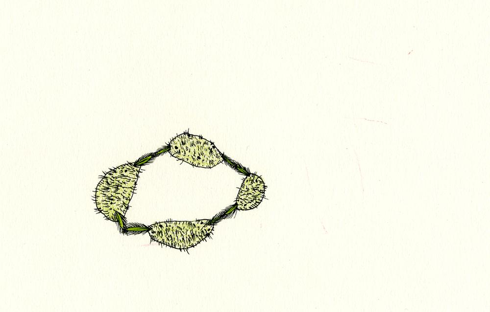 "Hand Holding Furry Rocks, 6.5"" x 9"", 2003"
