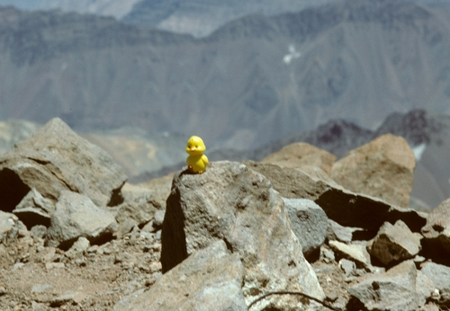 Mountaineering // Aconcagua