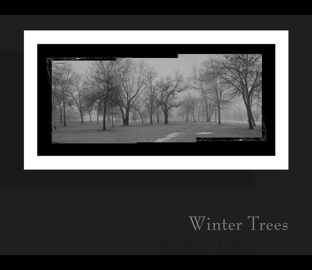 wintertreses.jpg