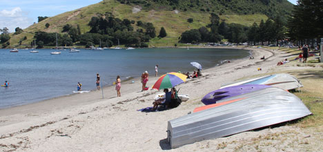 Tauranga City Council staff will explore future options for the dinghies scattered along Pilot Bay.