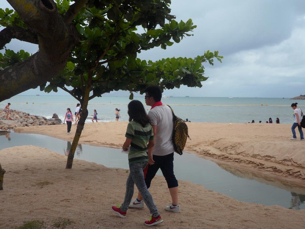 Taking a stroll along the beach