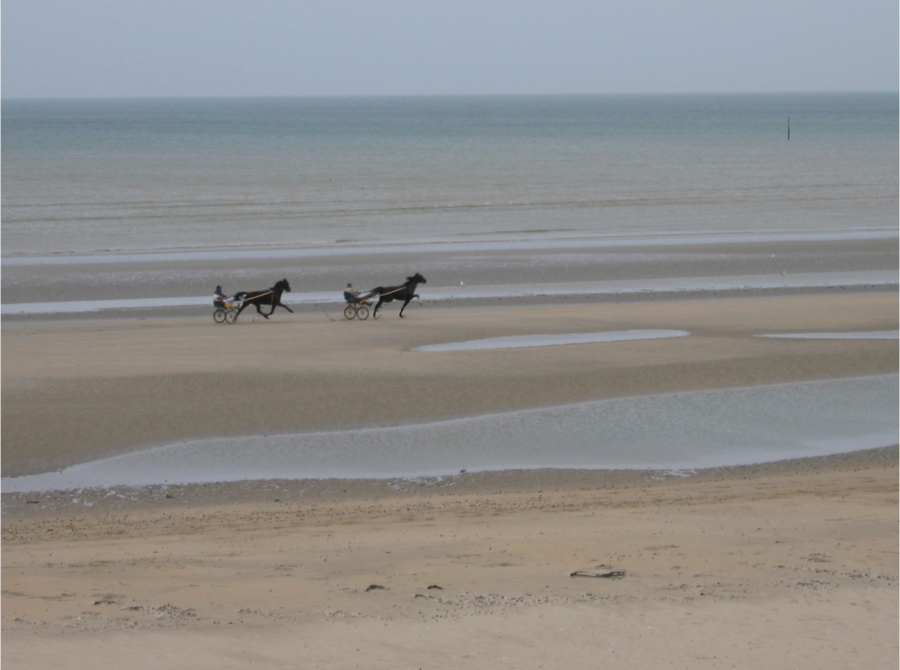 Carriages on an empty Utah Beach, Christmas Eve 2004.