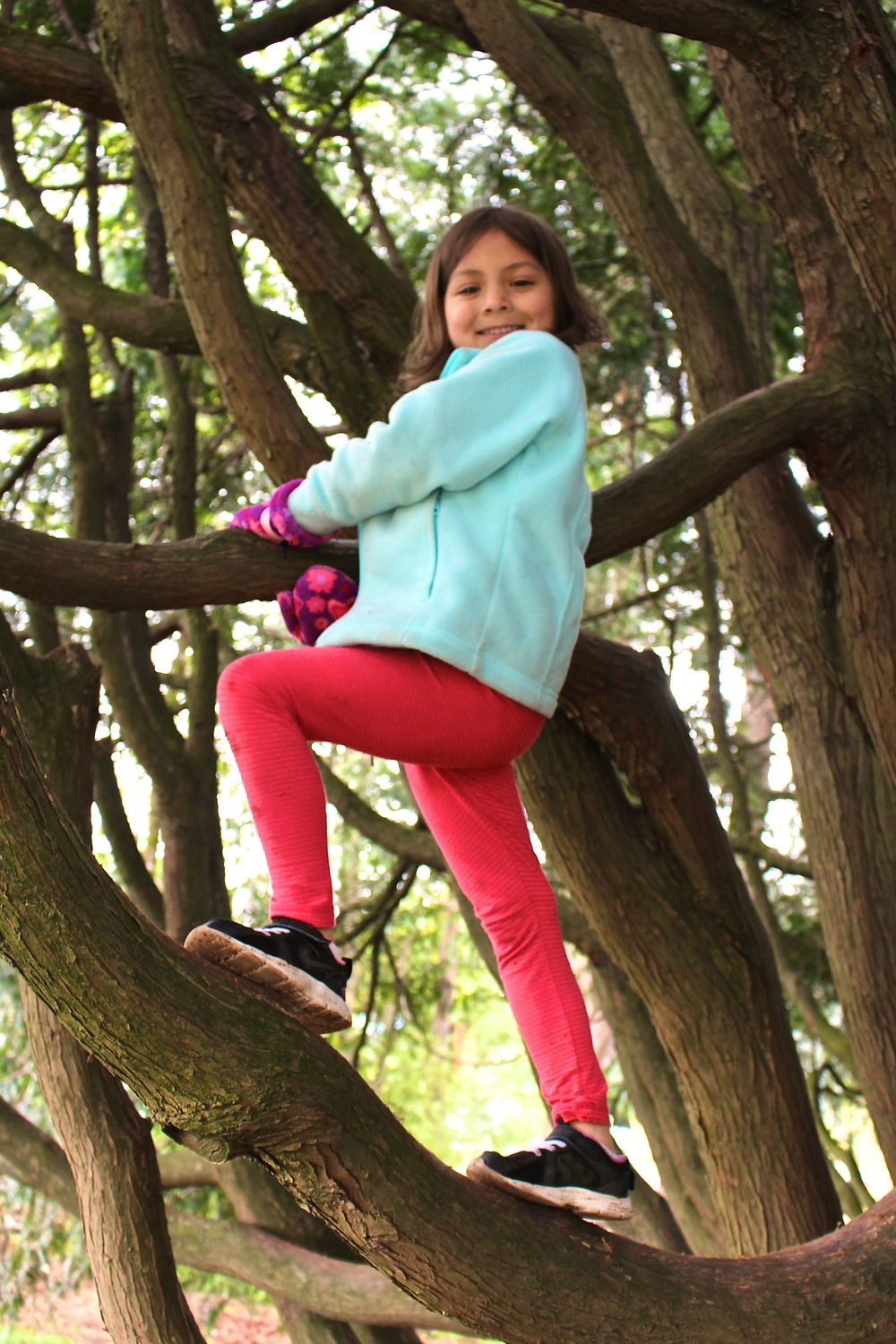 My five-year-old daughter had been talking for weeks about wanting to climb a tree. The Zoom tree was just what she needed!