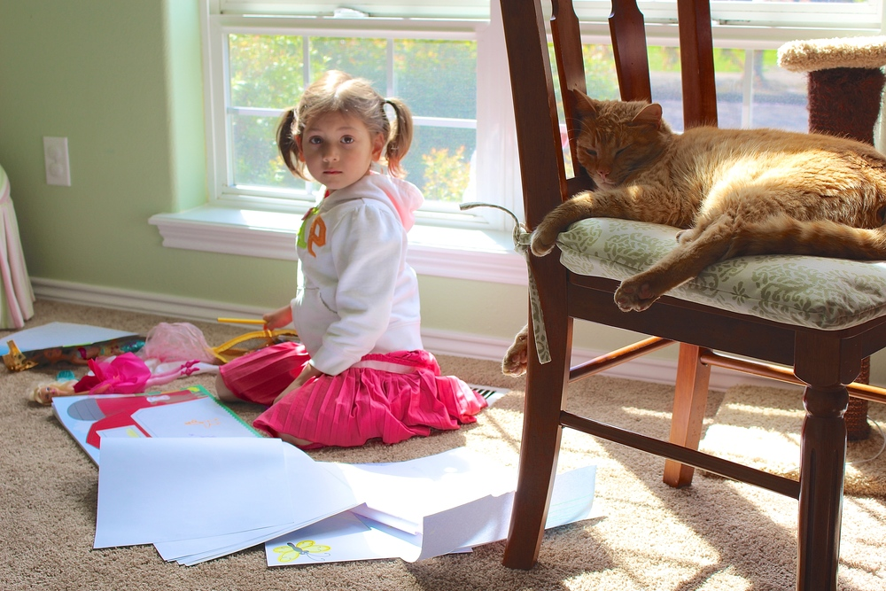 My daughter interrupted from her drawing and play (while our cat naps on)