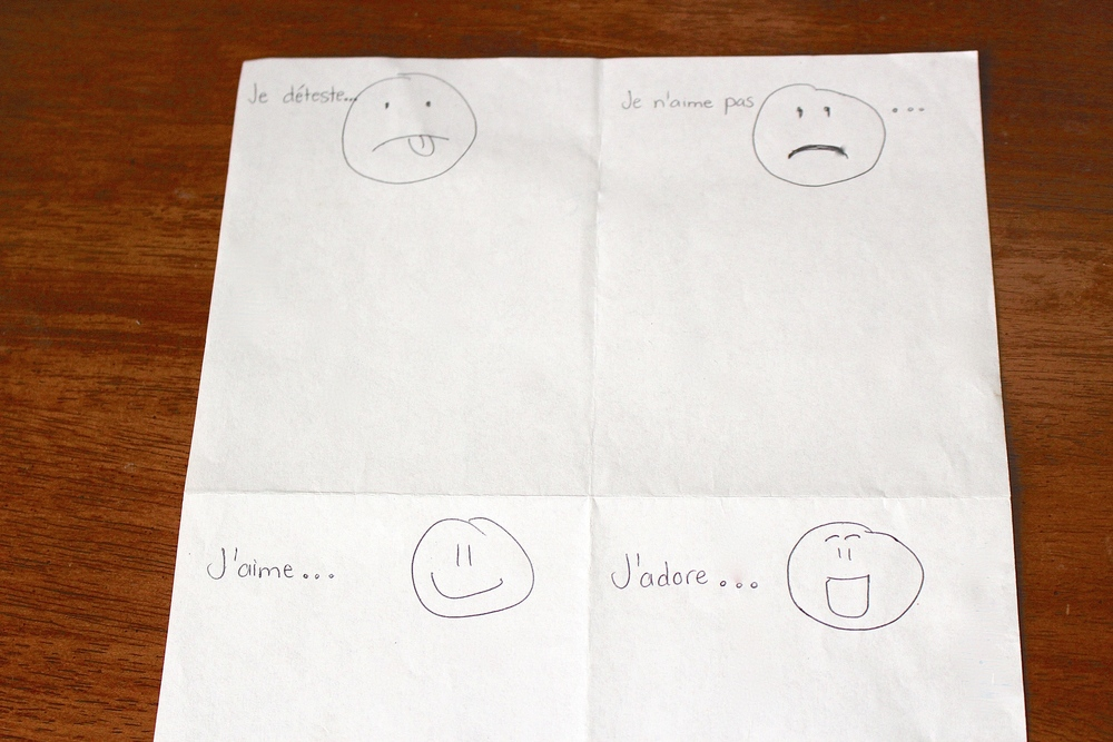 A simplified likes and dislikes chart quadrant that students can create from scratch