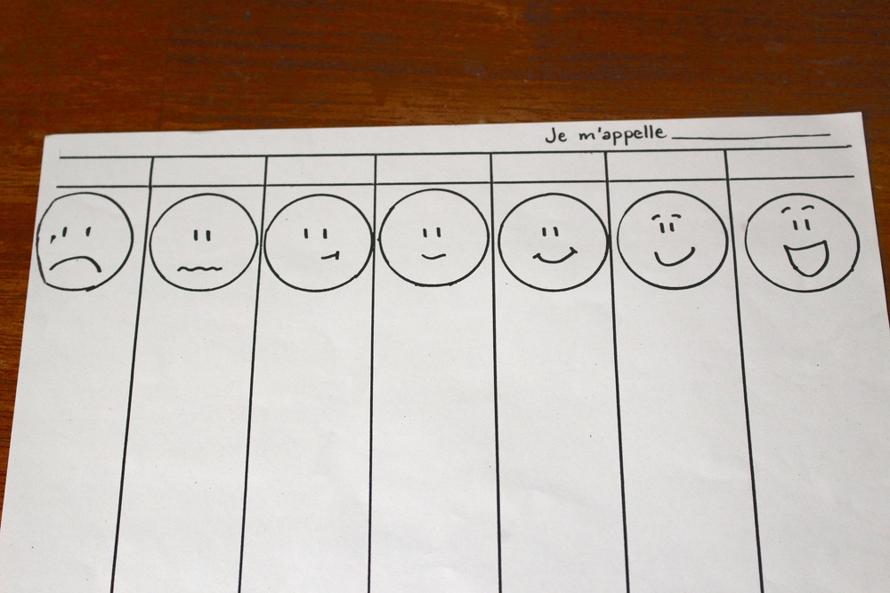 A blank likes and dislikes chart