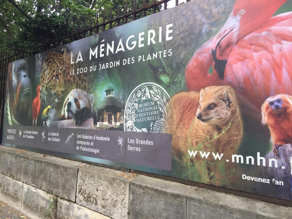 A family visit to paris 39 jardin des plantes m nagerie intentional mama - Zoo de paris jardin des plantes ...