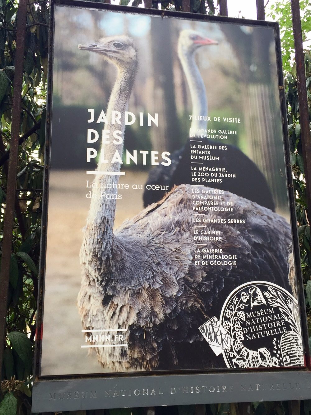 Ad featuring the ostriches at the Ménagerie , Paris