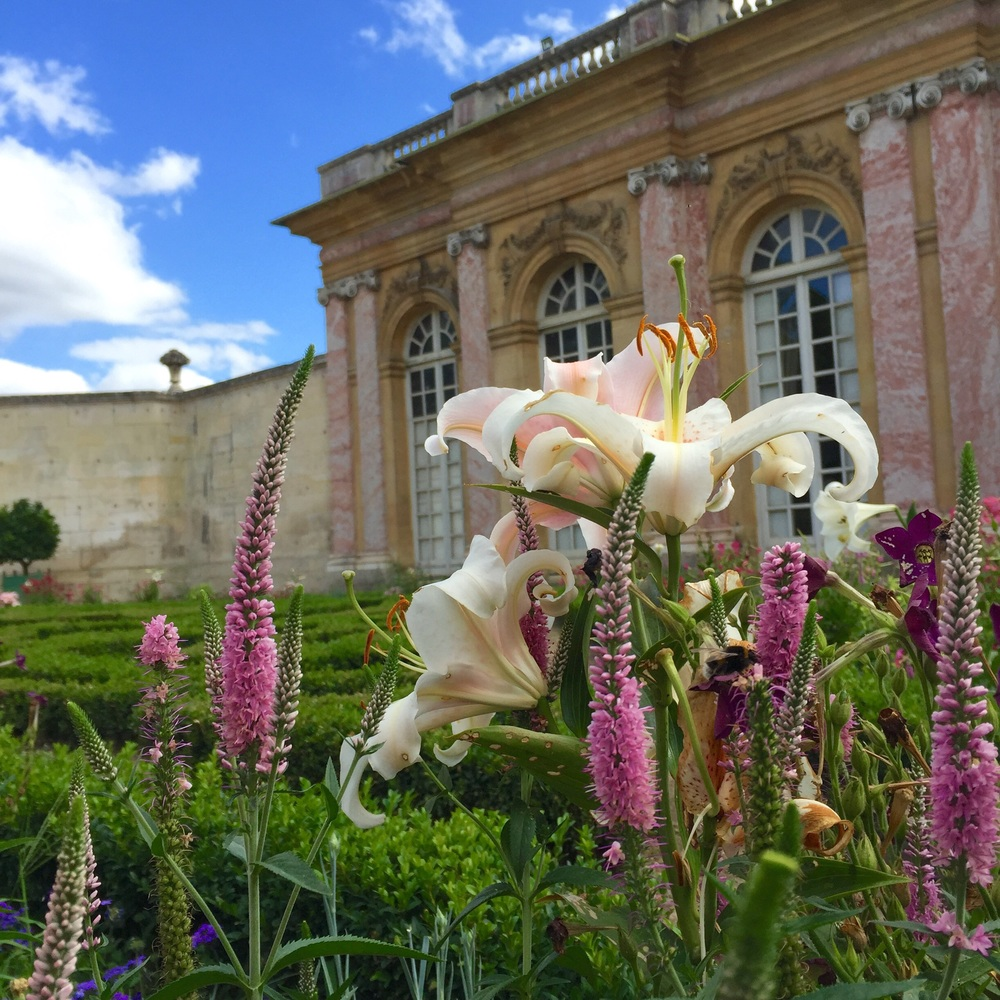 Le Grand Trianon at Versailles (from my  Instagram account )