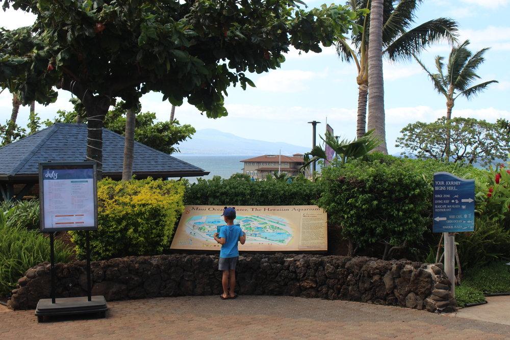 The Ocean Center looks out onto beautiful Ma'alaea Harbor