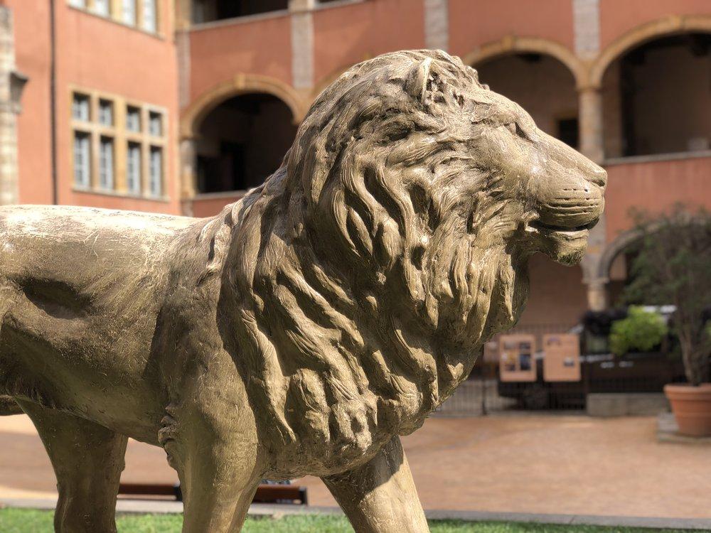 Lion of Lyon, Place de la Basoche, Vieux Lyon