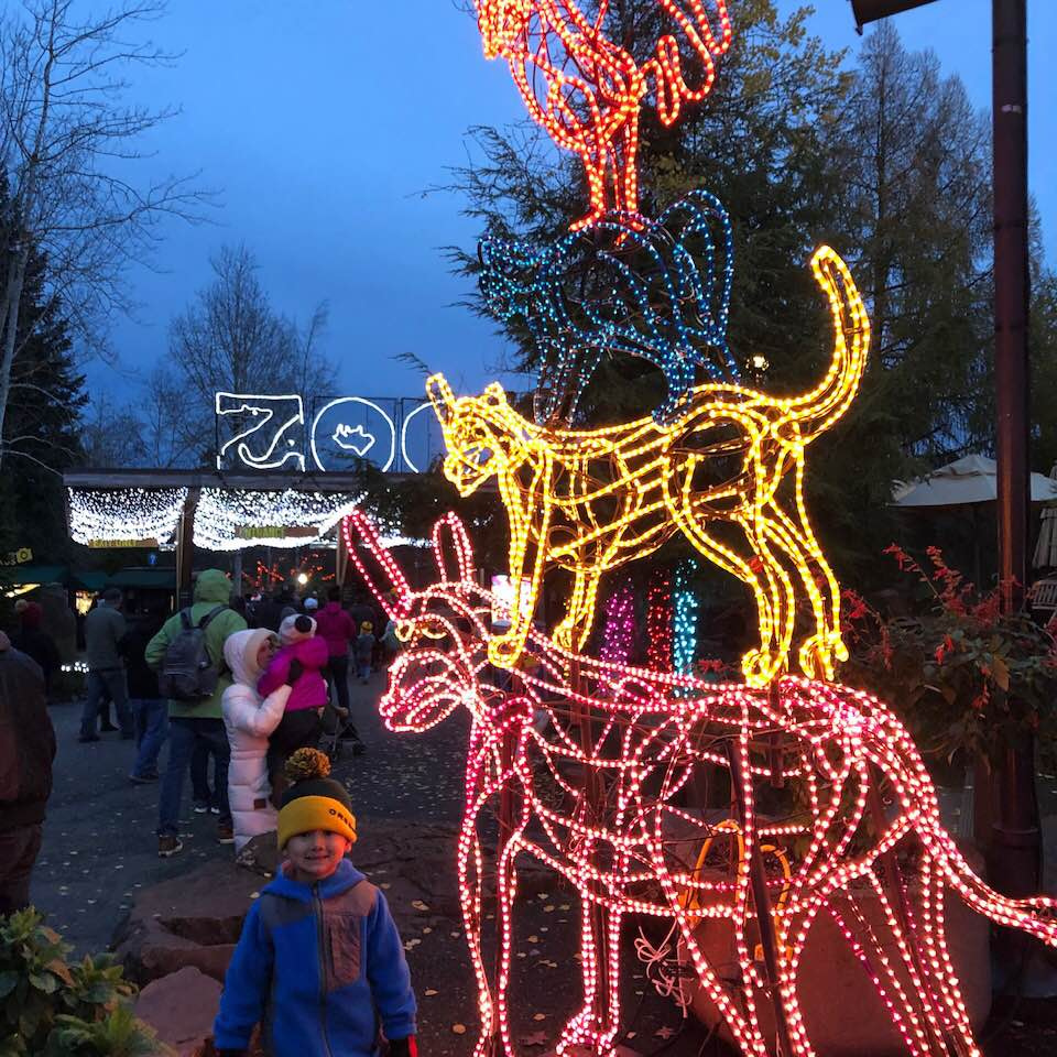 My three-year-old enjoying the Christmas lights at the Oregon Zoo