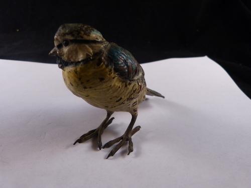Vienna Bronze Bird