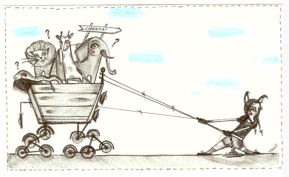 Una strana arca