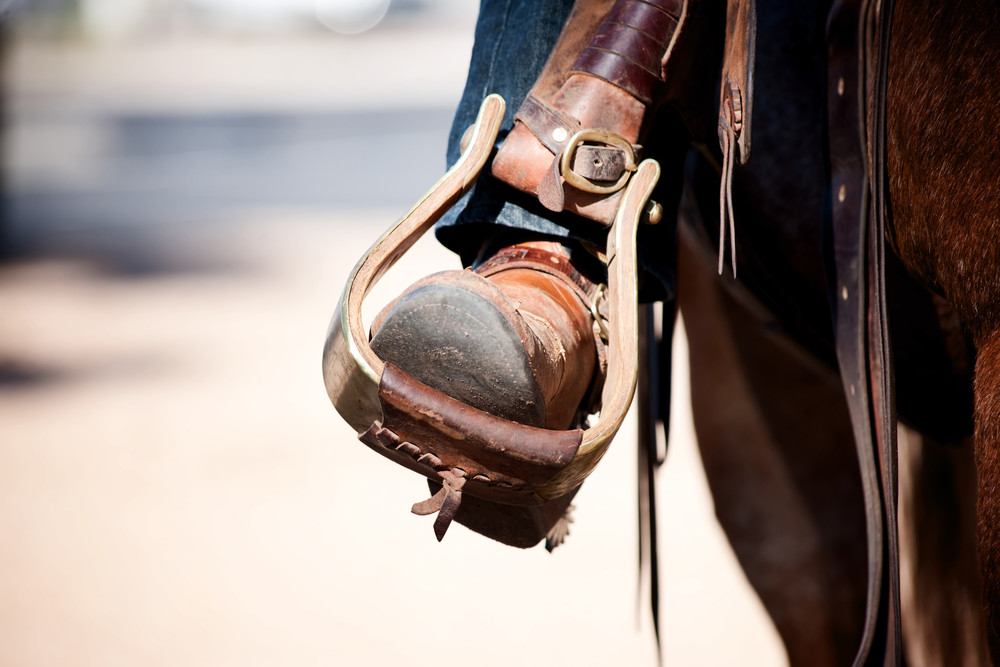 Come learn about the newest sport of Western Dressage!