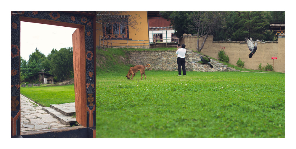 Bhutan_034 copy.jpg