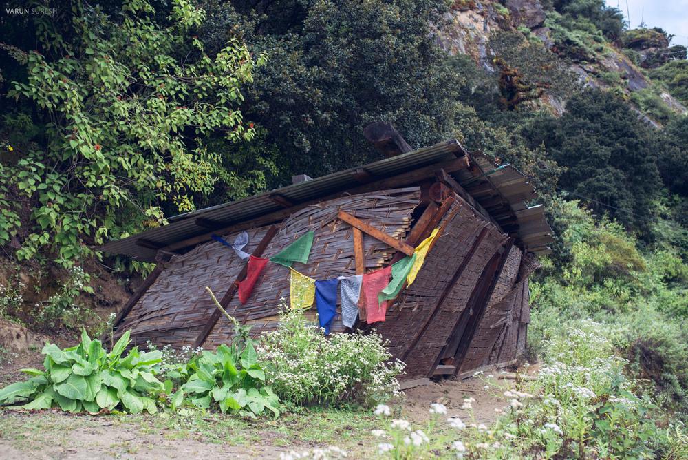 Bhutan_160.jpg