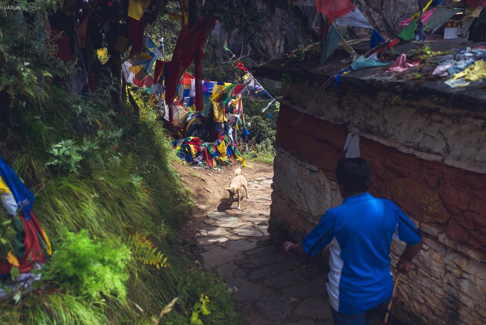 Bhutan_163.jpg
