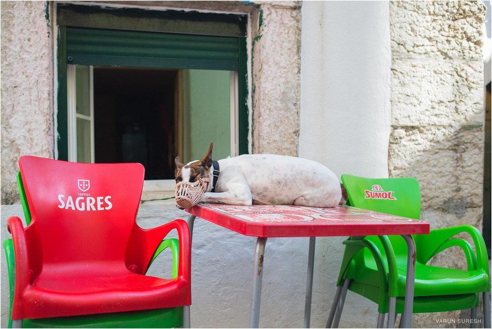 Spain_Portugal_2015_413_Blog.jpg