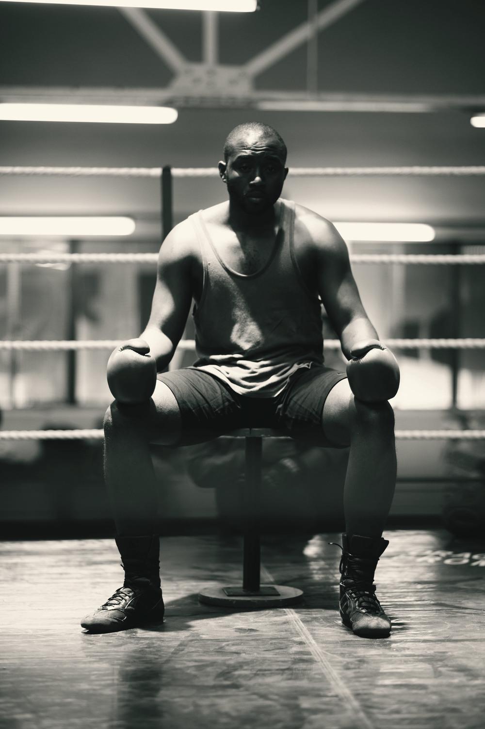 boxer 3.jpg