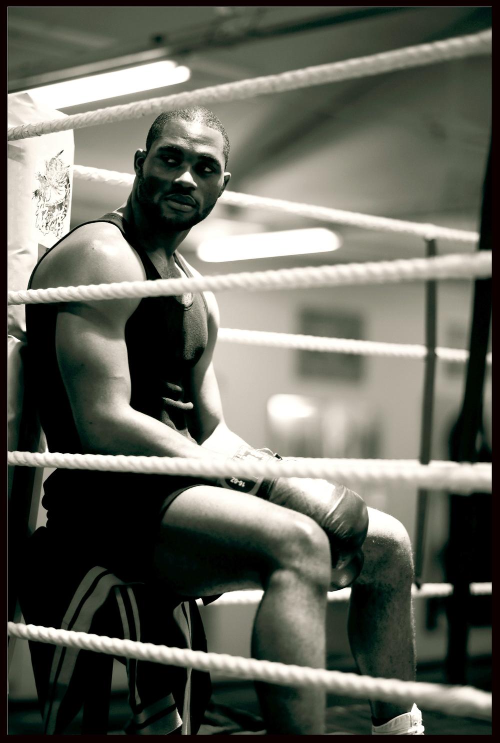 boxer2 black.jpg