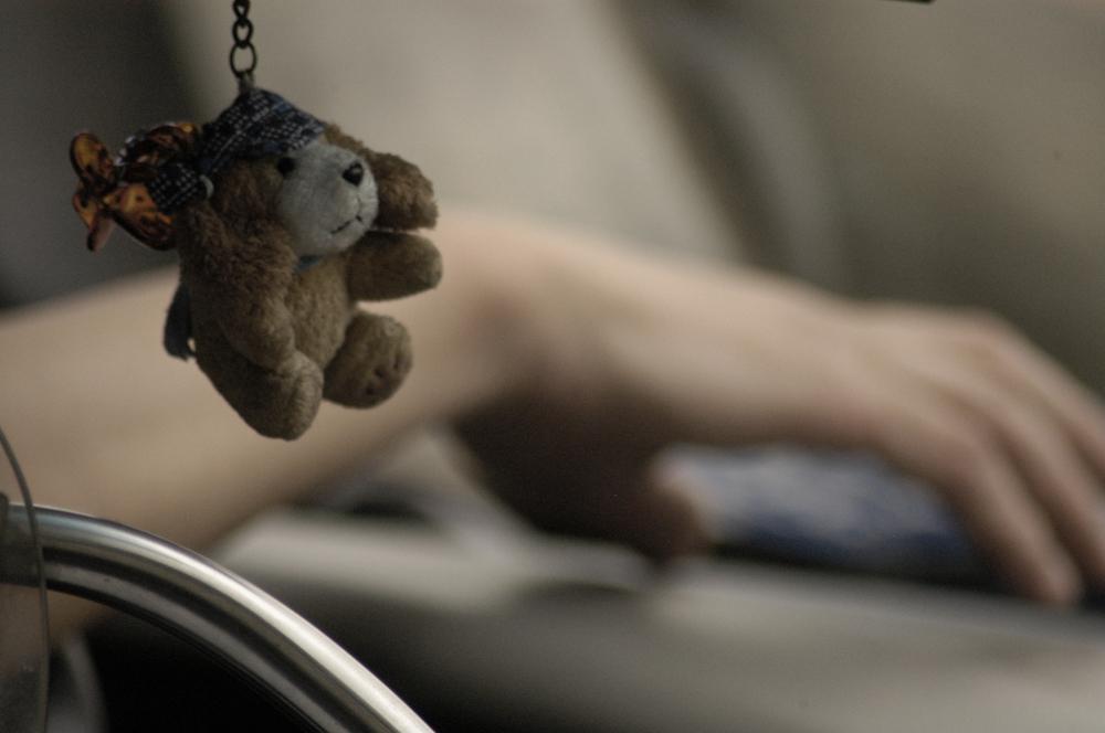hand bear.jpg