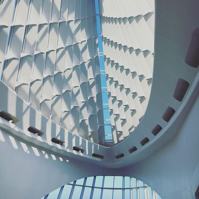 Can't really walk into this space and not snap a pic, no matter how many times I visit. #calatrava #milwaukee #artmuseum #architecture #interiorspace #art #wi #windows
