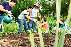 youn gardeners-neighbors.png