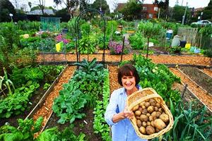 neighborhood garden-woman and produce.png