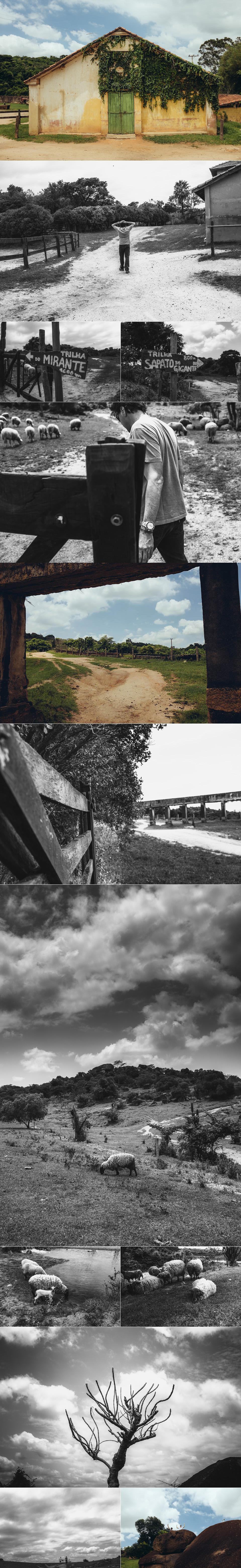 4-trilha1.jpg