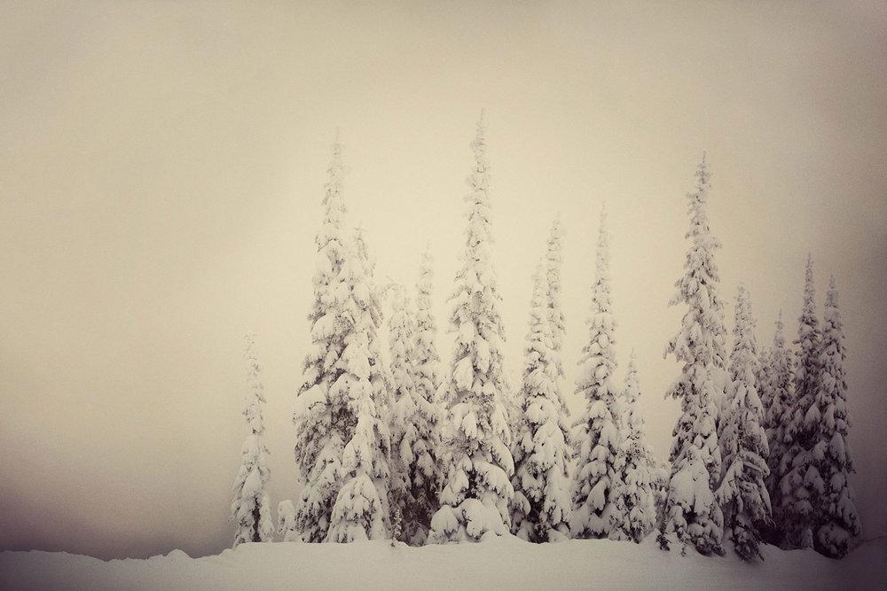 Michael Scott Slosar | Montana | Whitefish Mountain