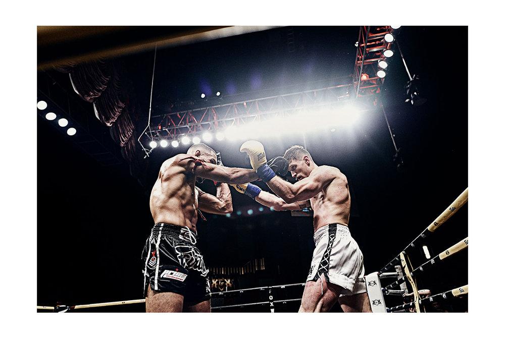 Fight-Night_Img-5v2.jpg