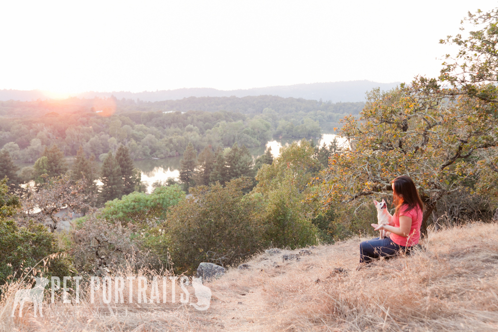 Pet portrait overlooking santa rosa spring lake