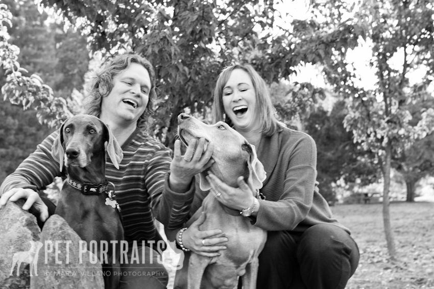 owners laughing with two pet dogs in santa rosa, ca photoshoot