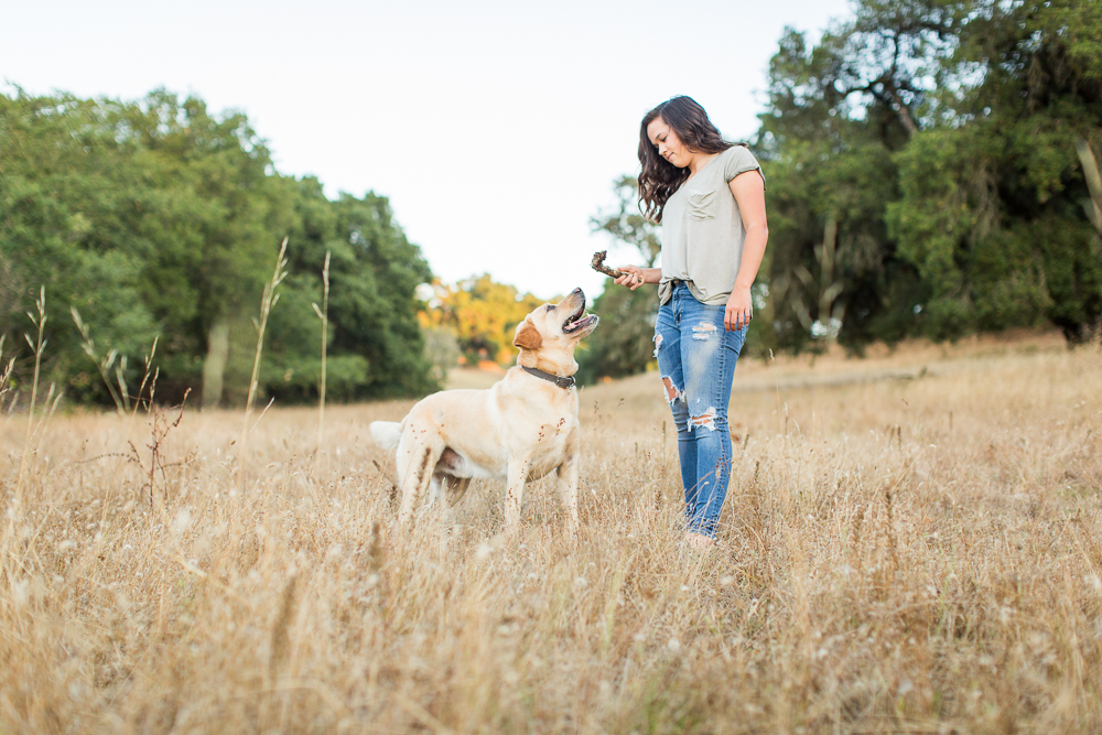 Yellow-Lab-with-best-friend-sonoma-pet-photographer-7.jpg