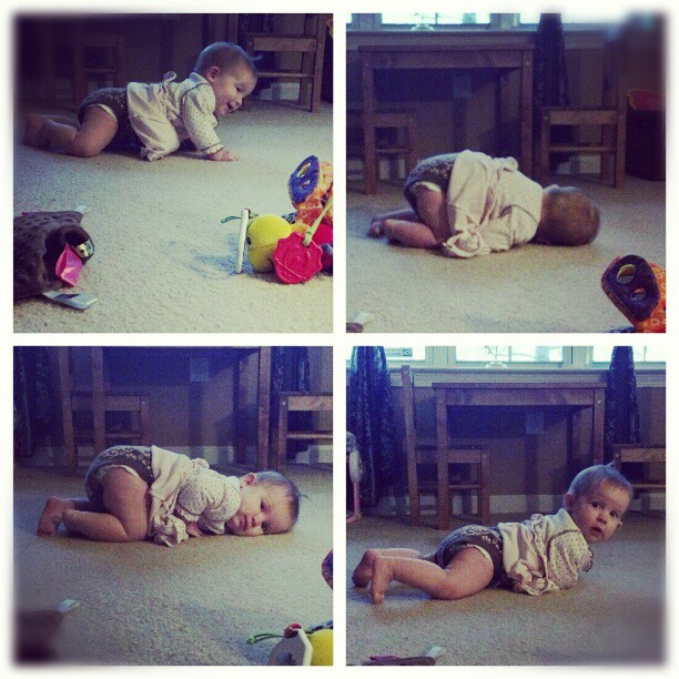 Pixie3 is mobile. I repeat, Pixie3 is mobile. Call for reinforcements! #crawling #rolling #giggling