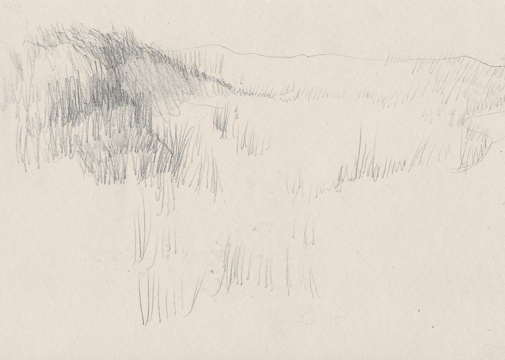 Sketch of a Grassy Dune